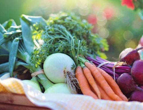 En primavera añadimos sabor y salud a nuestros platos