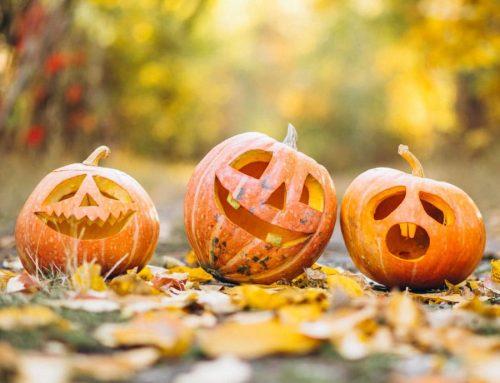 Este año, ¡no dejes de celebrar las tradiciones!
